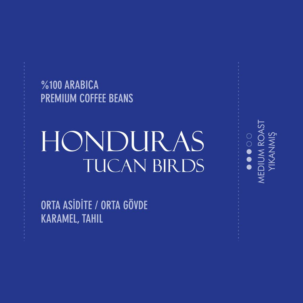 Honduras Tucan Birds